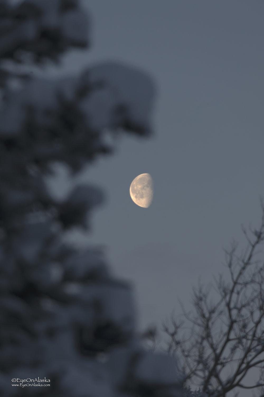 Moonset around 9:30am