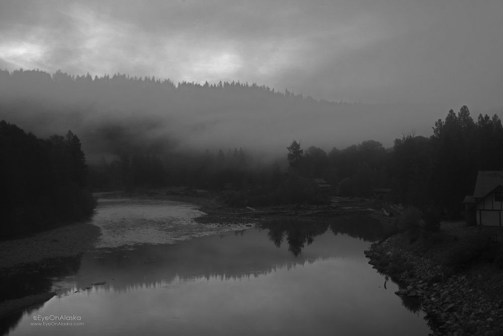 Waking up in the Cascade Mountains. Dreamlike.