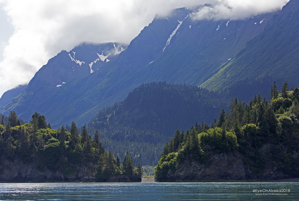 We're kayaking over there to hike 2 miles up over the saddle to the Grewingk Glacier in Kachemak Bay State Park—the oldest State Park in Alaska.
