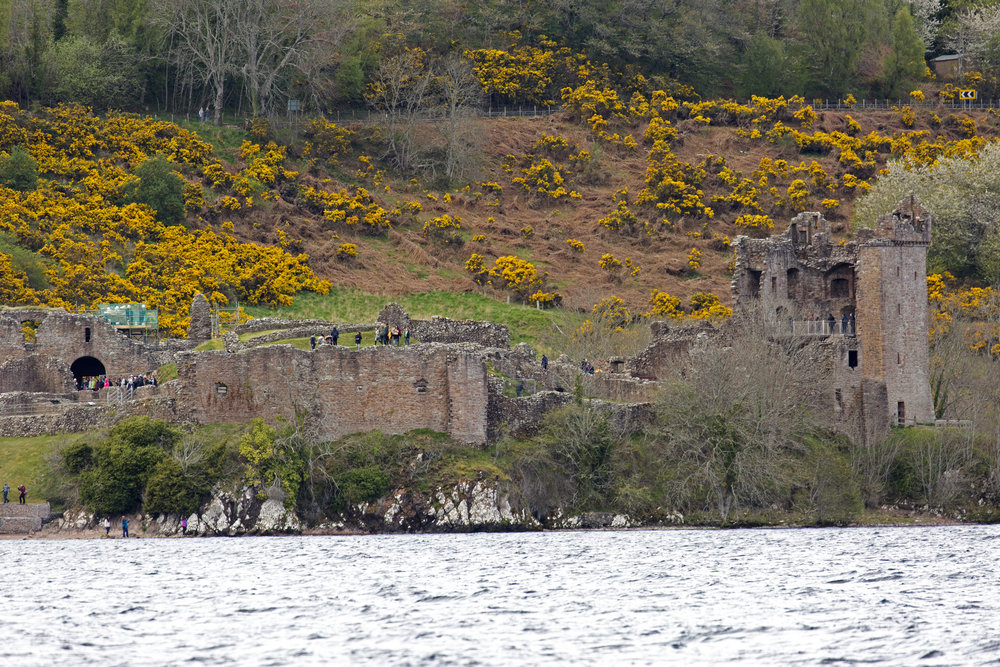 The ruins of Urqhart Castle overlooking Loch Ness.  We're going to stop there on our way back.  For now, we push forward to Fort Augustus.