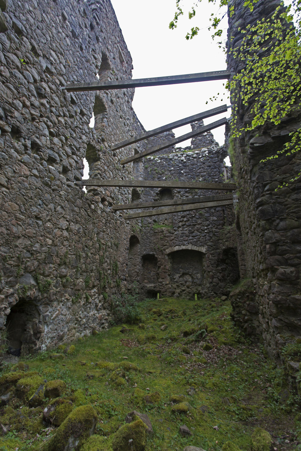 After docking, we hiked up to the ruins of Invergarry Castle which was gorgeous.