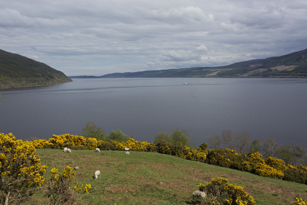 Kind of the quintessential view of Loch Ness.