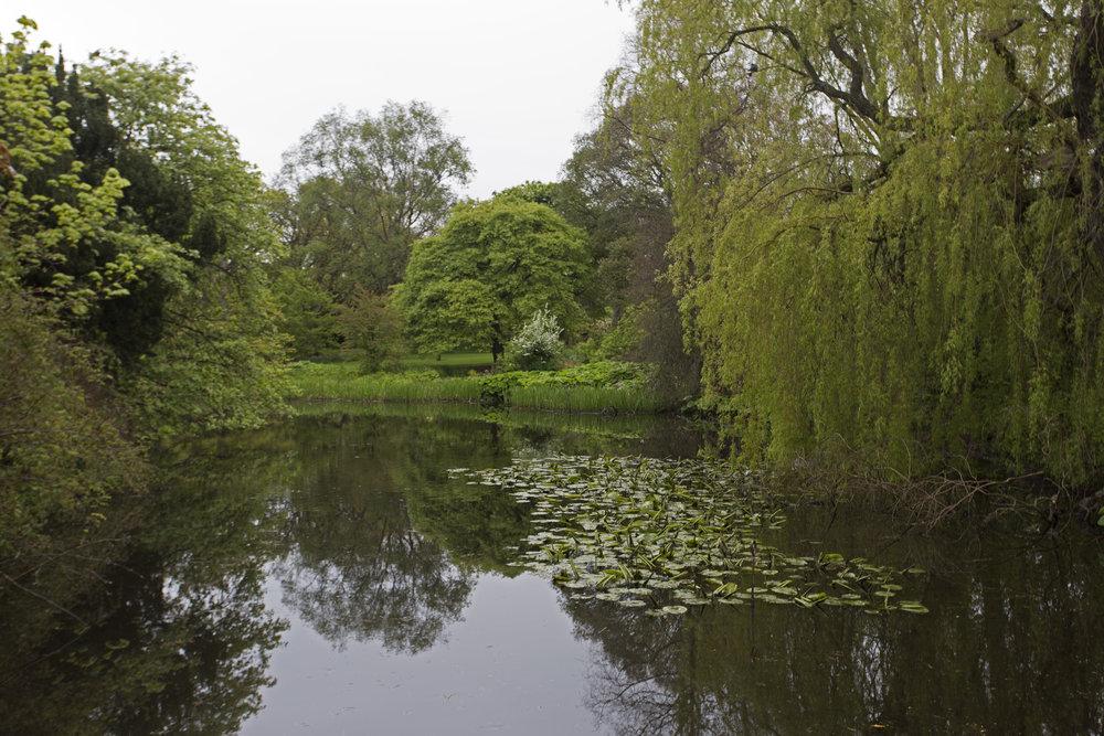 The Royal Botanic Gardens.