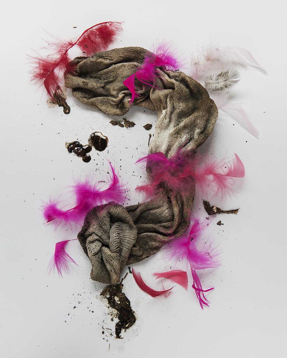 Pink W.M.W. (Feathers)web.jpg