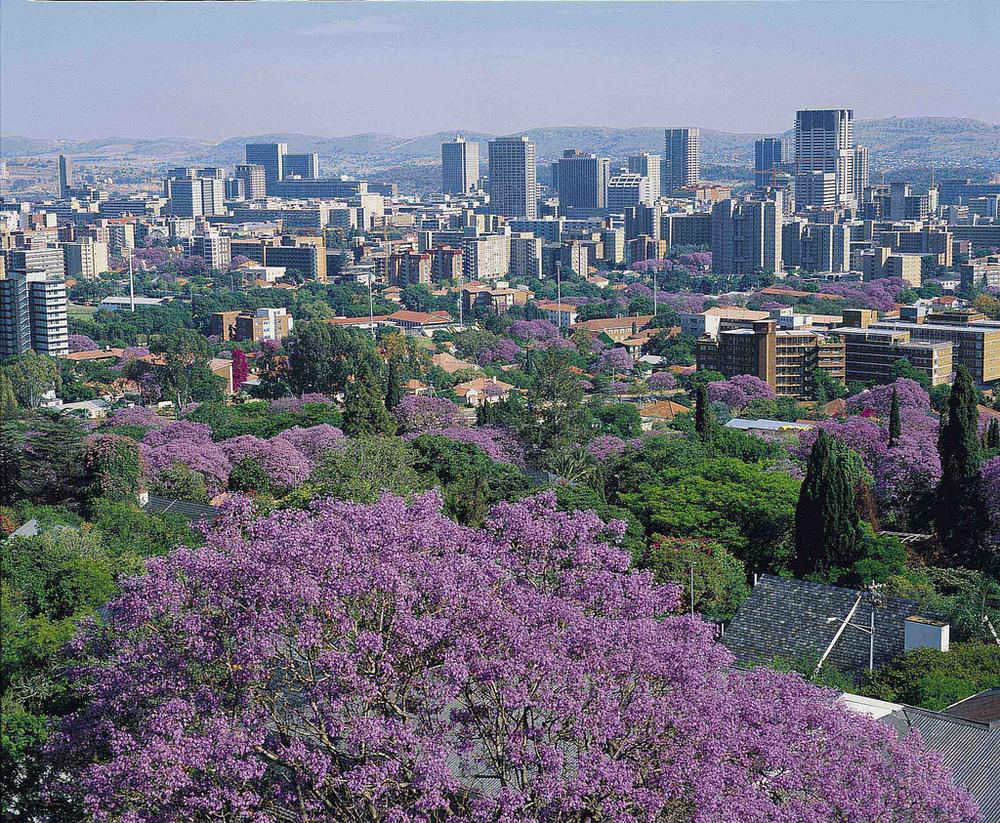 Pretoria, South-Africa, where Leo was born.