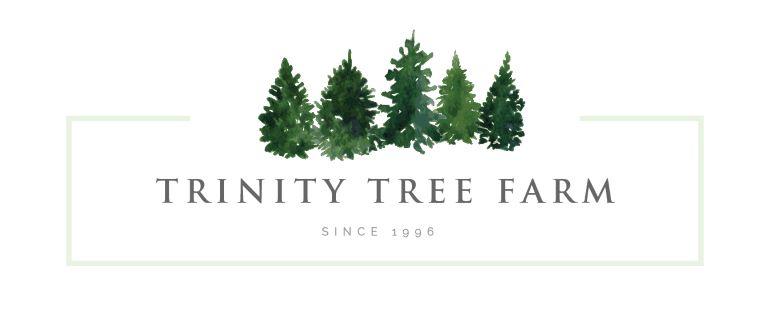 Barn Weddings — Trinity Tree Farm