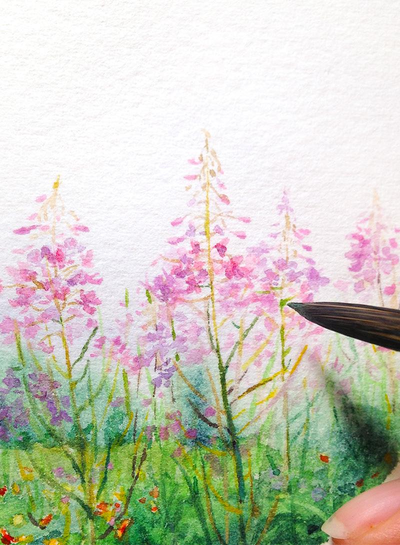 Wildflowers Vernon, Canadian landscape watercolor. By Wanru Kemp