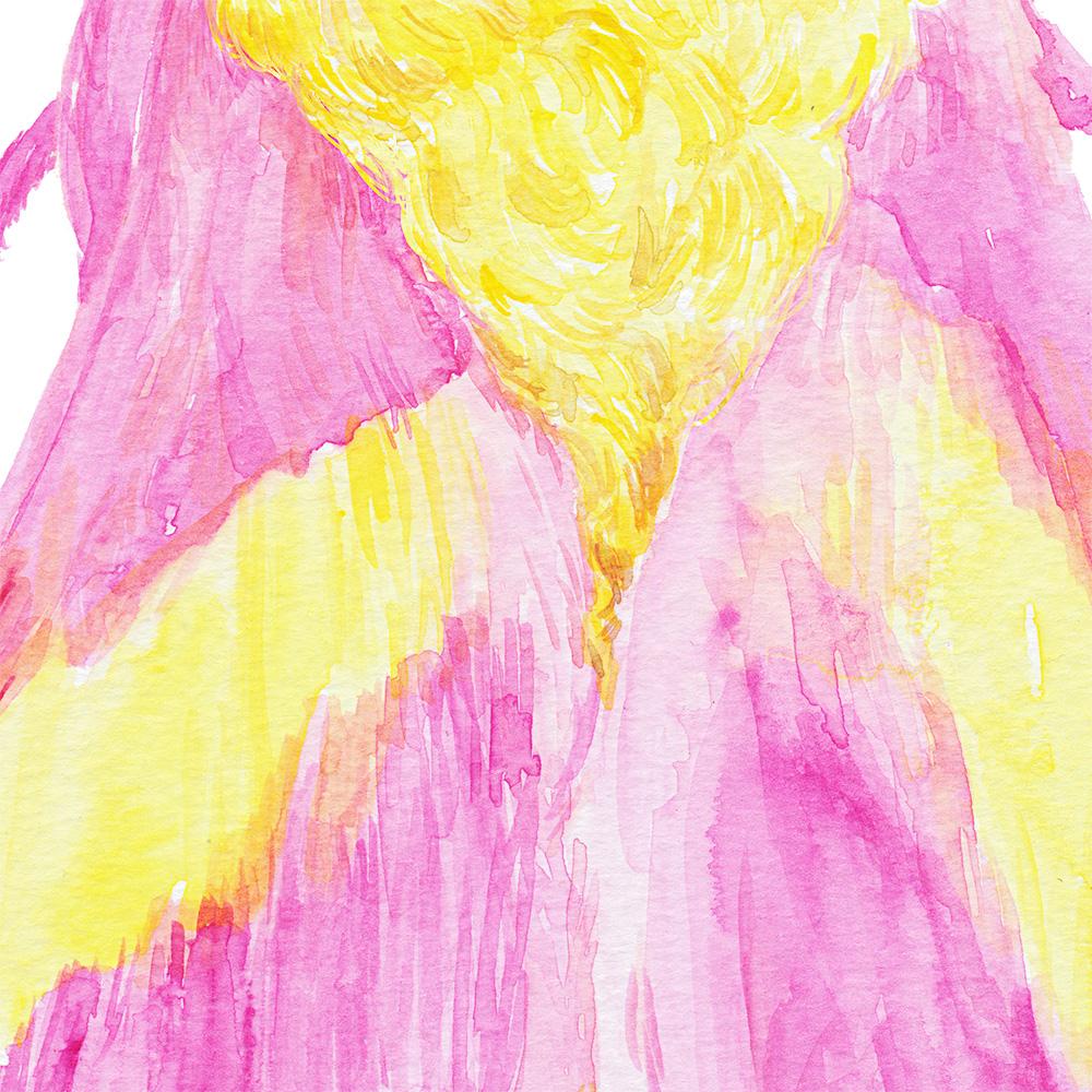 rosy-maple-moth-watercolor-painting-h2.jpg