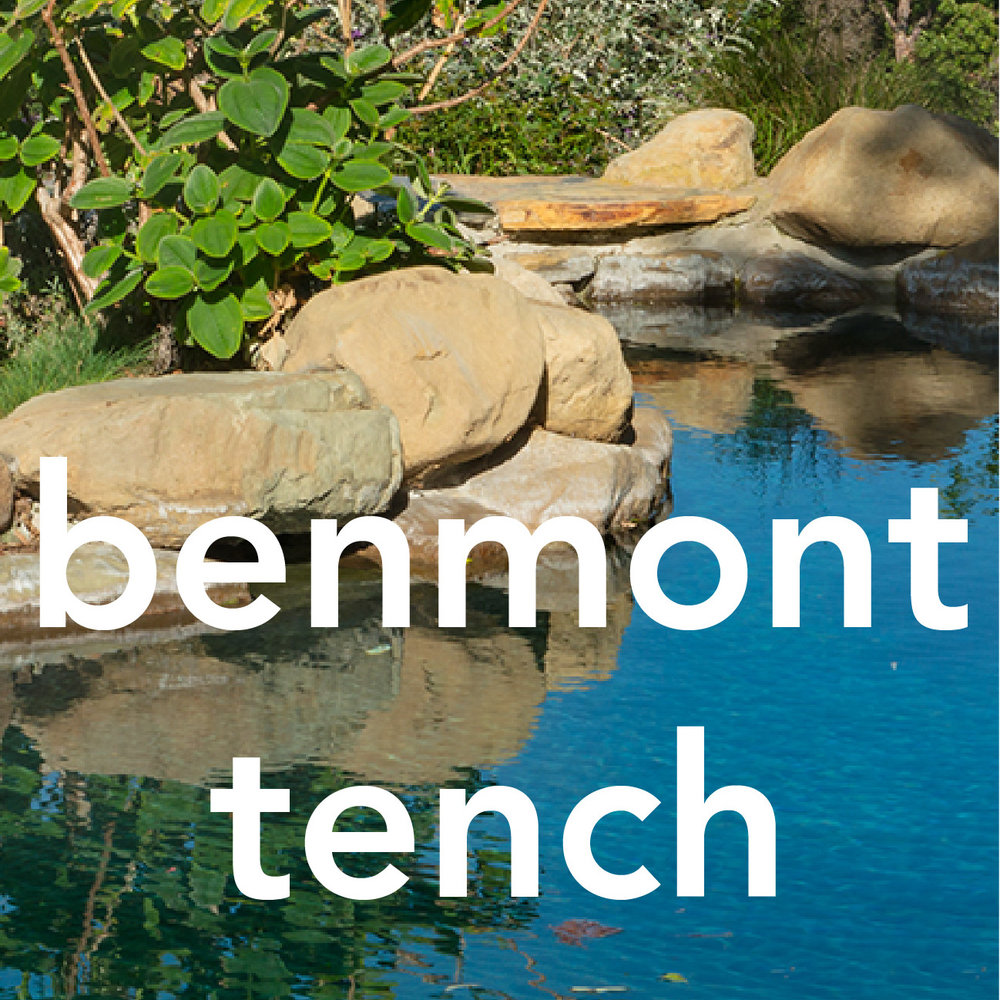 benmont-tench