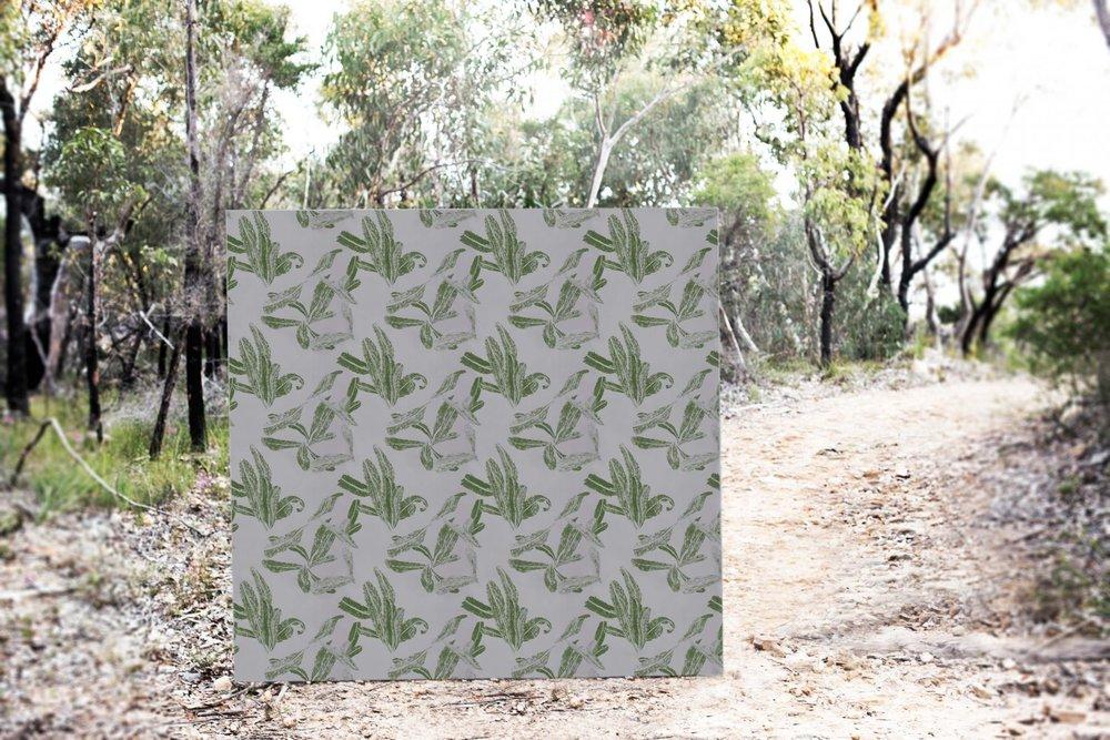 Banksia, wallpaper.