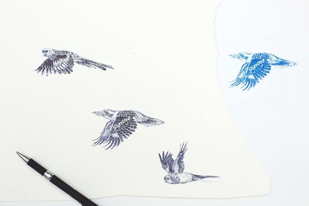 Biro birds and screen printed kookaburra.