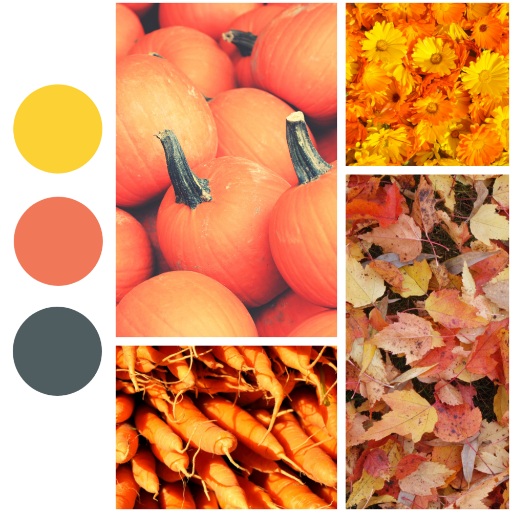 syksy_colormoodboard (1).png