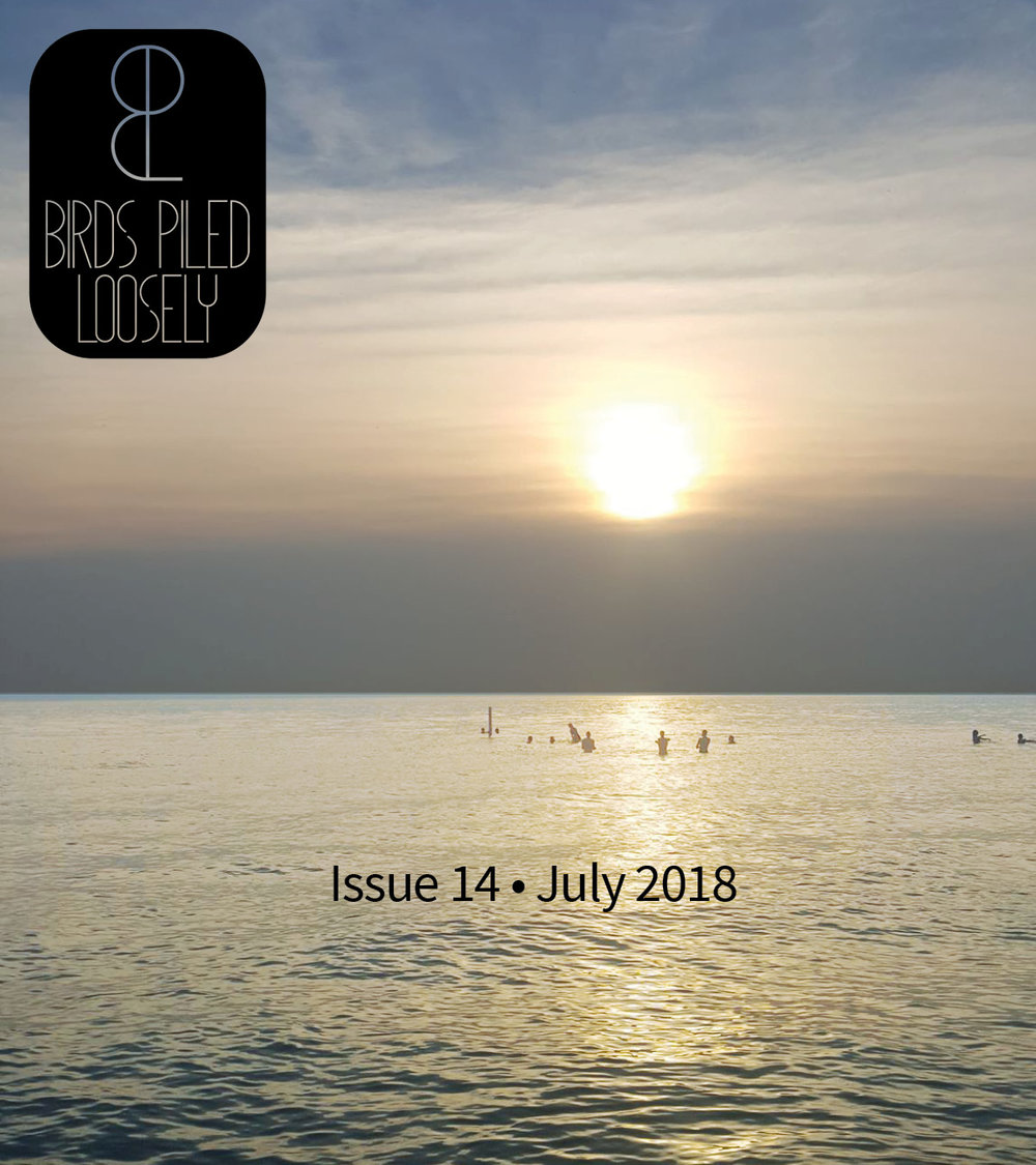 BPL ISSUE 14