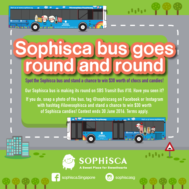 Sophisca bus 10.png