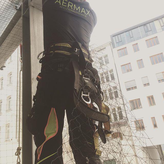 #taubenabwehr in #stuttgart #ohne #Hebebühne mit #aermax #industriekletterer