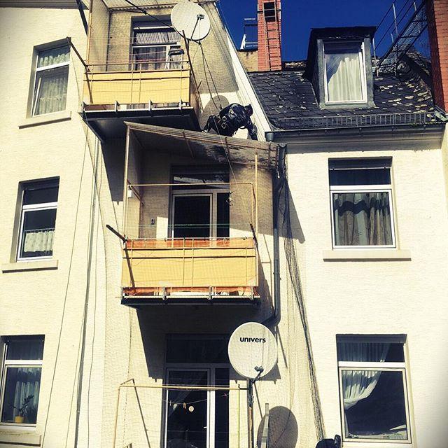 #taubenabwehr #balkon #taubennetz #industriekletterer #taubenvergrämung #ohnehebebühne #hinterhof durch #aermax #seilzugangstechnik