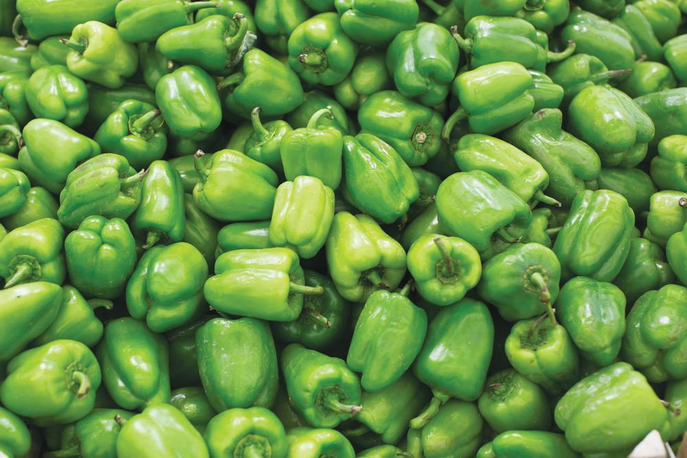 Green Bell Pepper.png