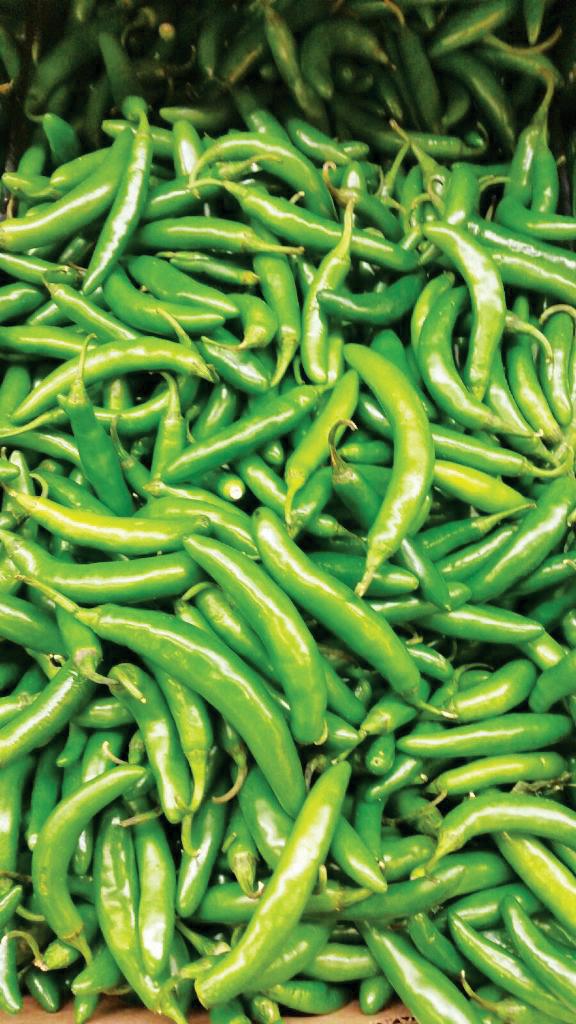 Serrano Pepper.png