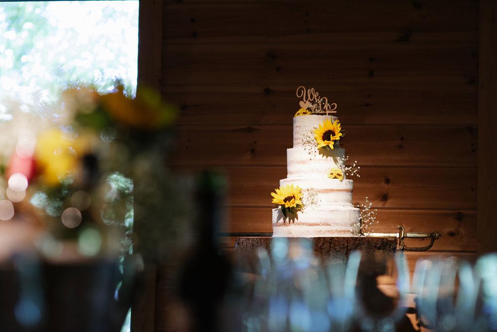 Styal-Lodge-Wedding-Photography (64).jpg