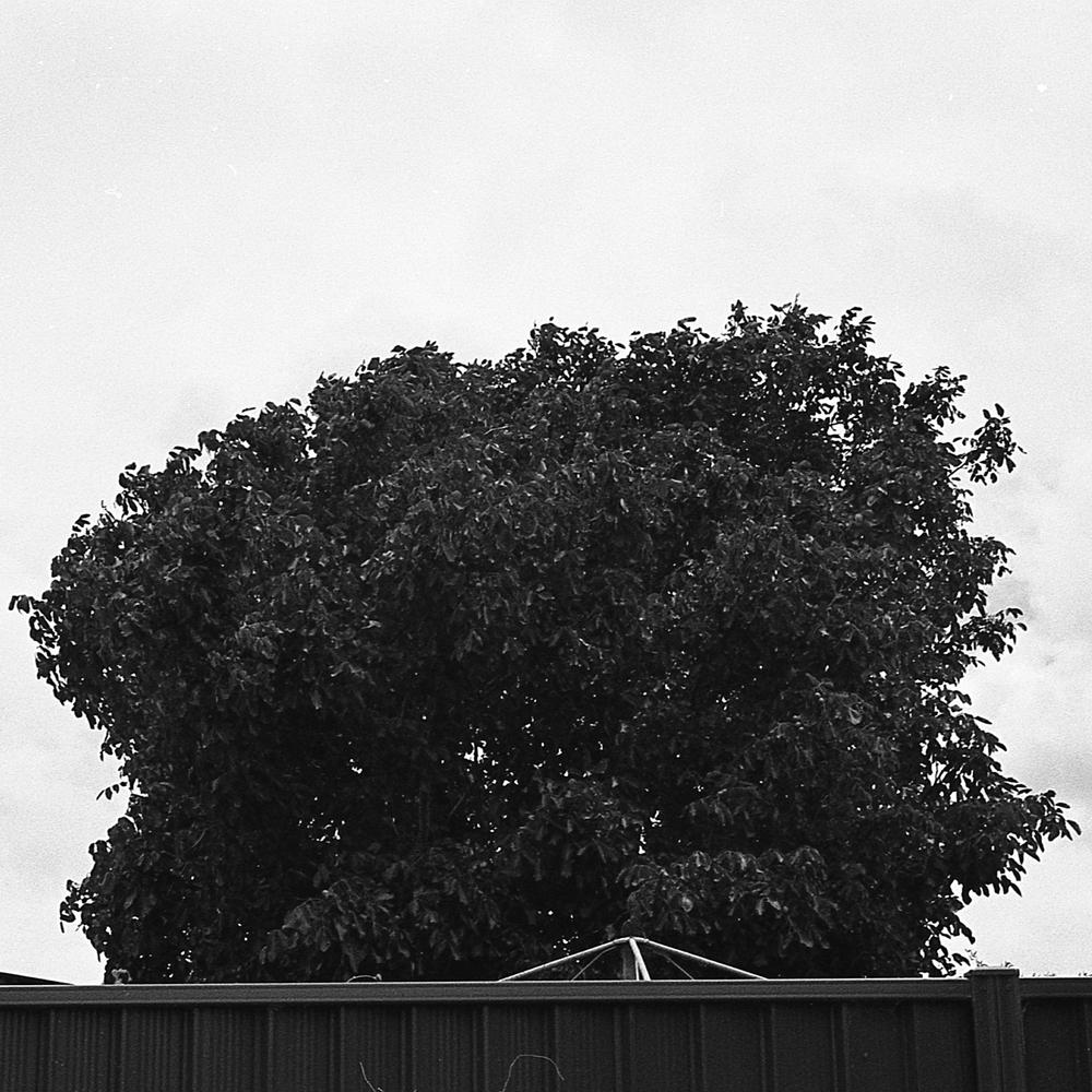 Nikon FG-102.jpg