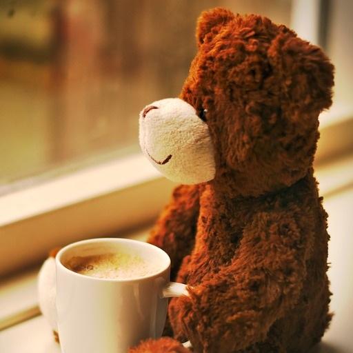 bear+coffee.jpg