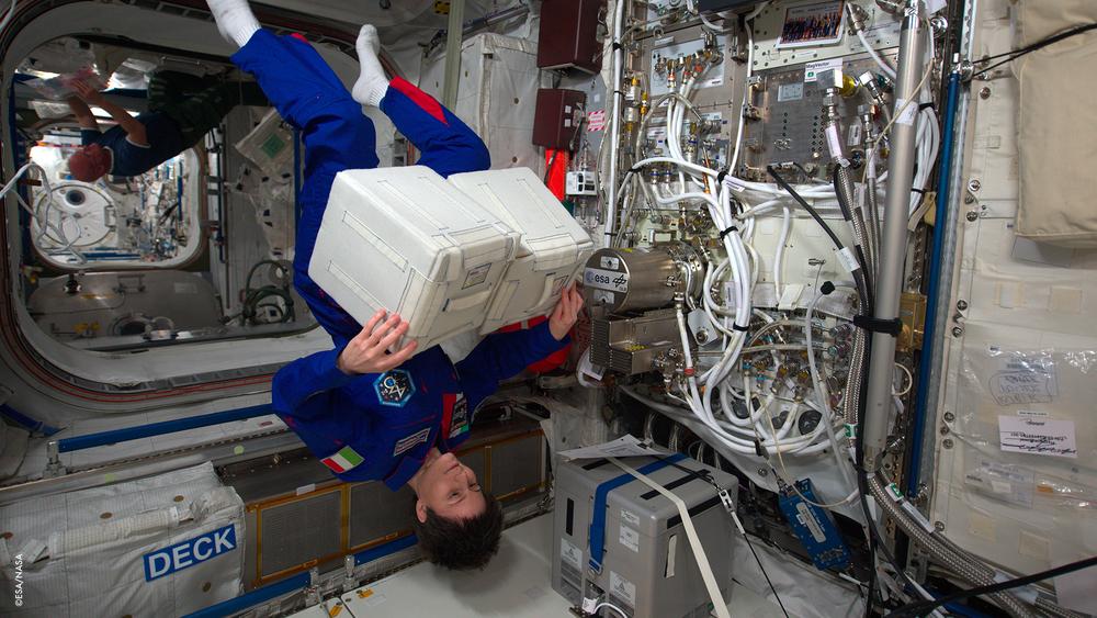 Un 'regalo' arrivato con la Soyuz (veicolo spaziale)!Scott Kelly, Gennady Padalka e Mikhail Kornienko mi hanno portato un regalo speciale... una coltura di cellule staminali!