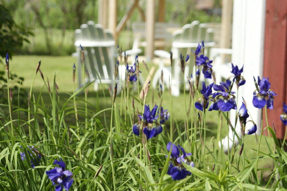 Nordiclife - tuinstoelen