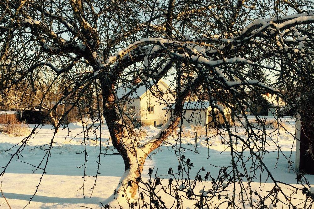 15_huis_winter.jpg