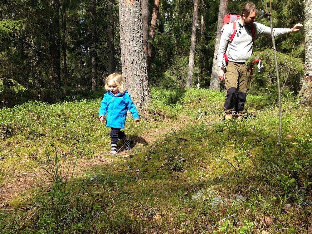 NordicLife hiking.jpg