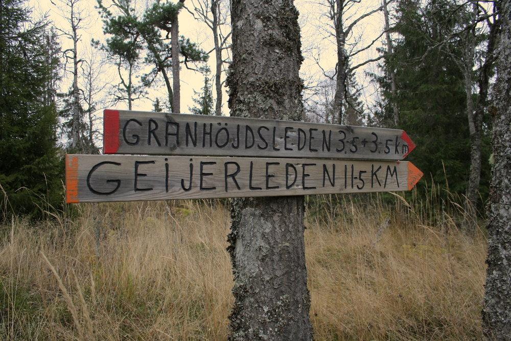 NordicLife hike.JPG