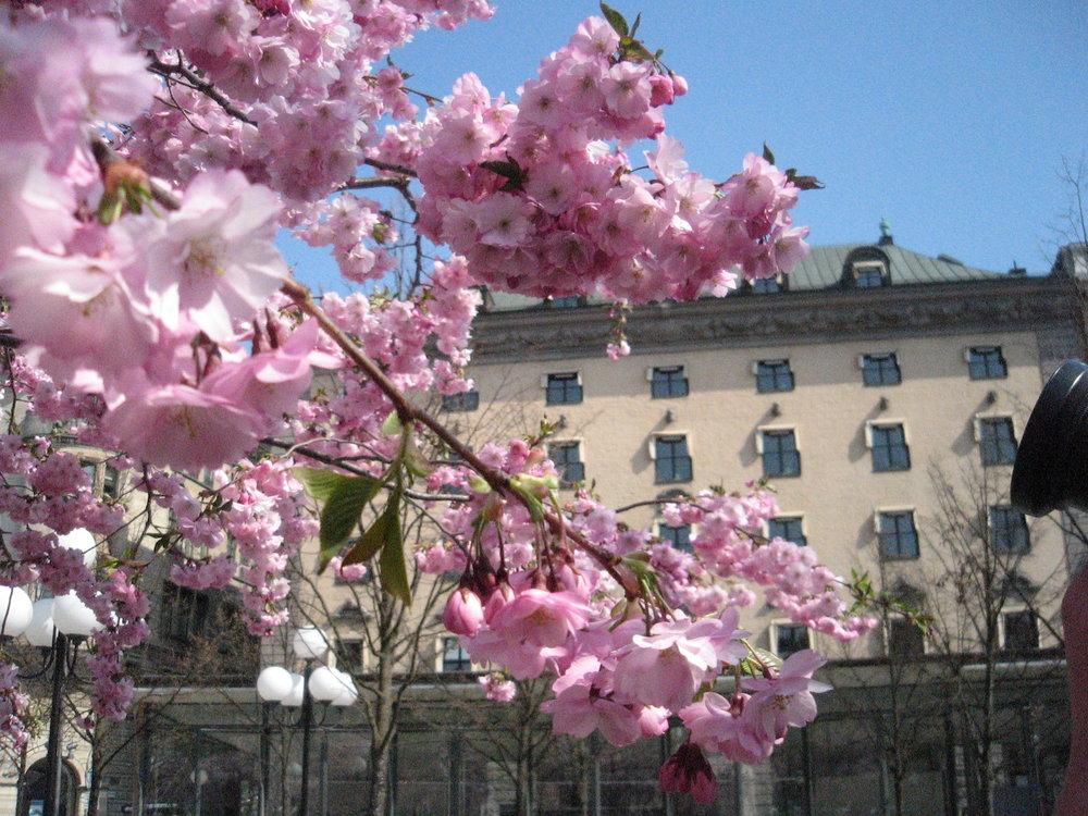 Kungsträdgården in Stockholm