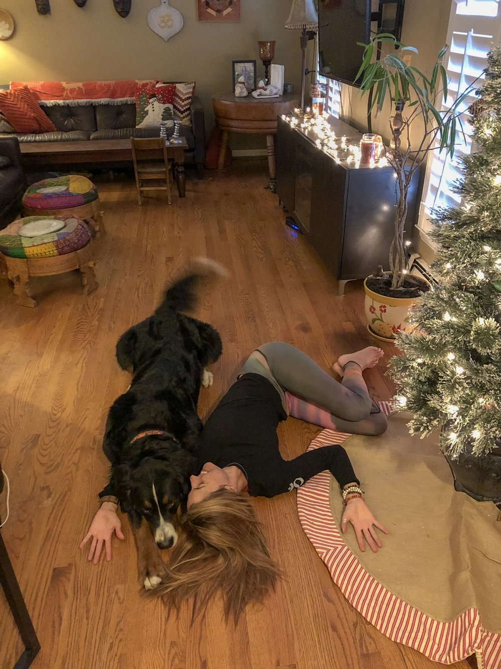 Reclined twists feel great on the low back after a long day shopping, cooking, or wrapping gifts. Our furry friends are also very emotionally supportive. Read my last blog post on  Simple Stretches to Reduce Back Pain .