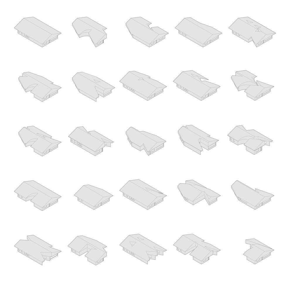 make2d axons reversed-1.jpg