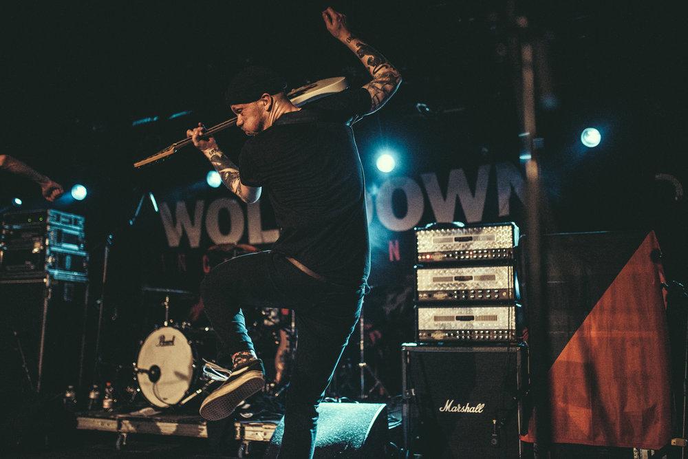 wolf down-3467.jpg