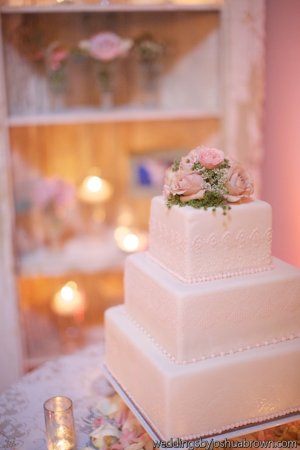 Cake with vintage bookcase behind.jpg