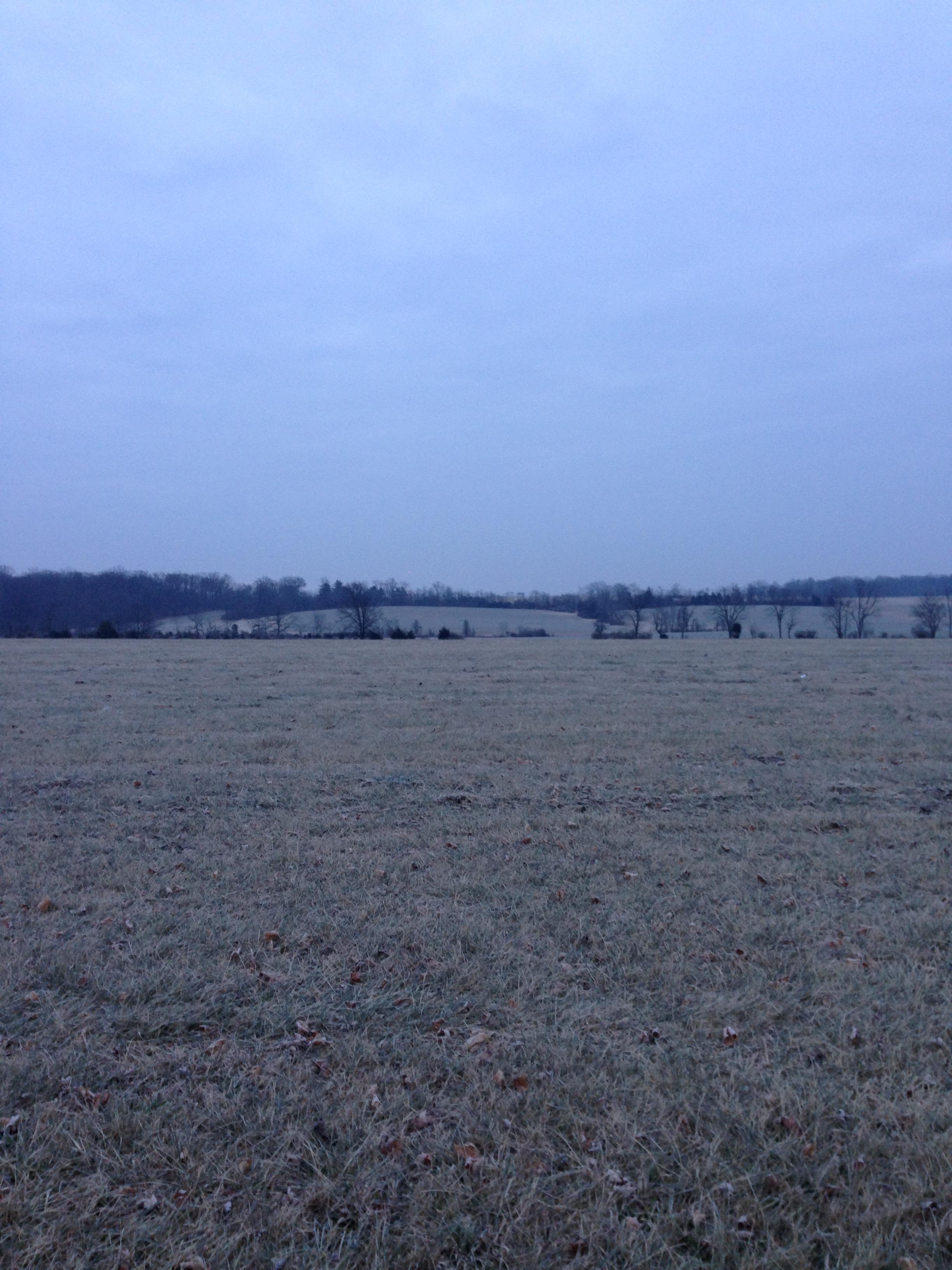 Brrr...it was COLD.