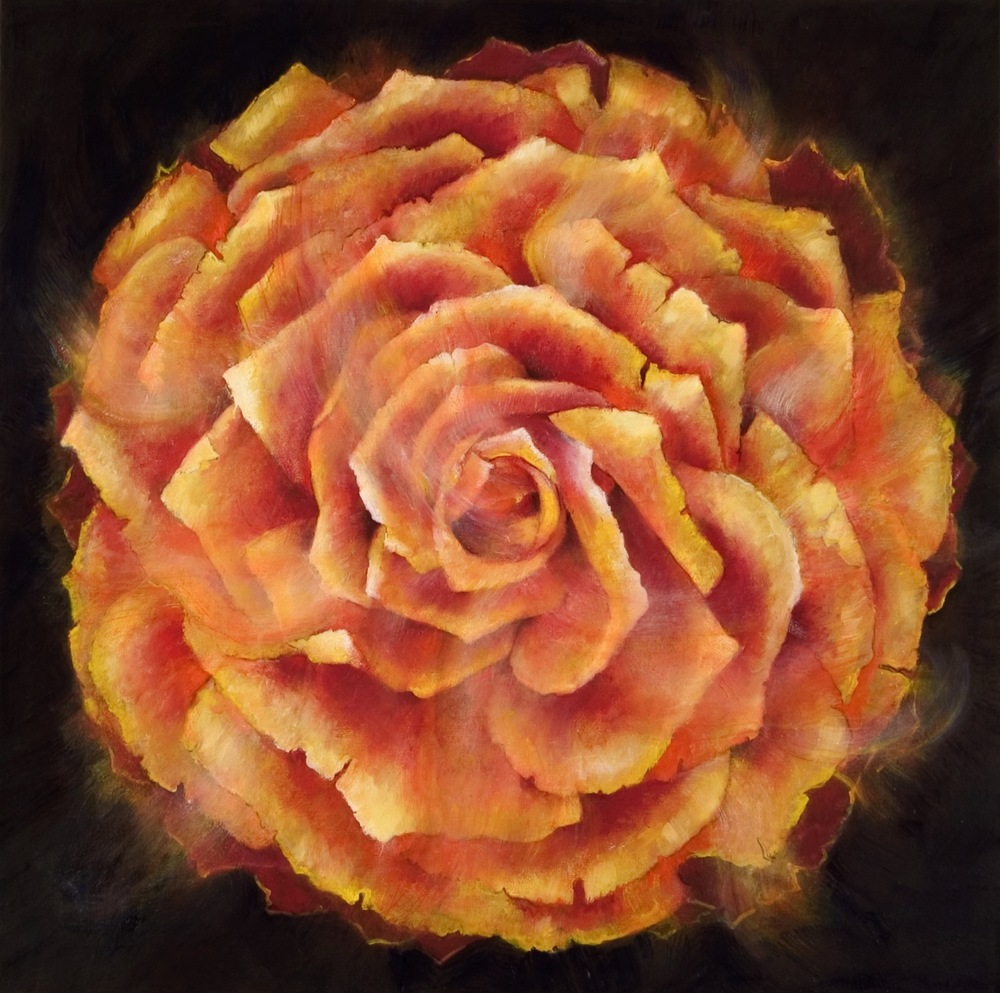 The Multifoliate Rose