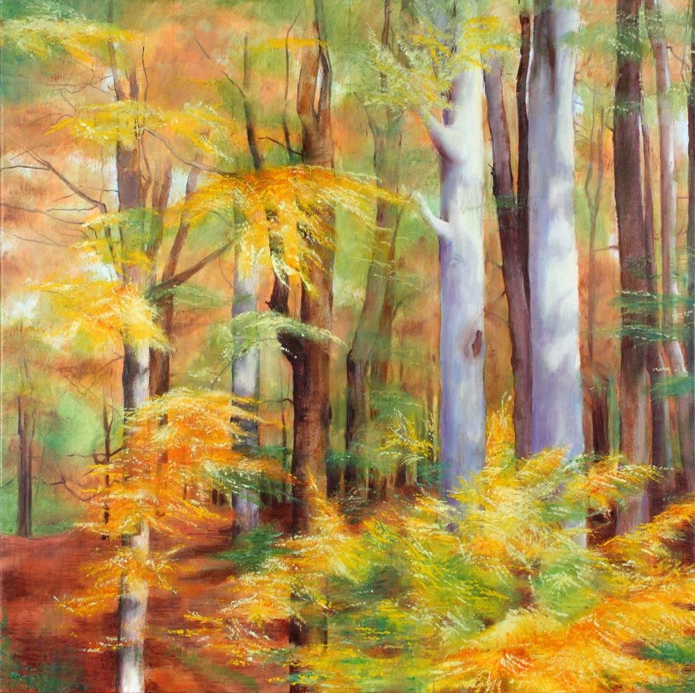 Autumn Trees - Ashridge Forest