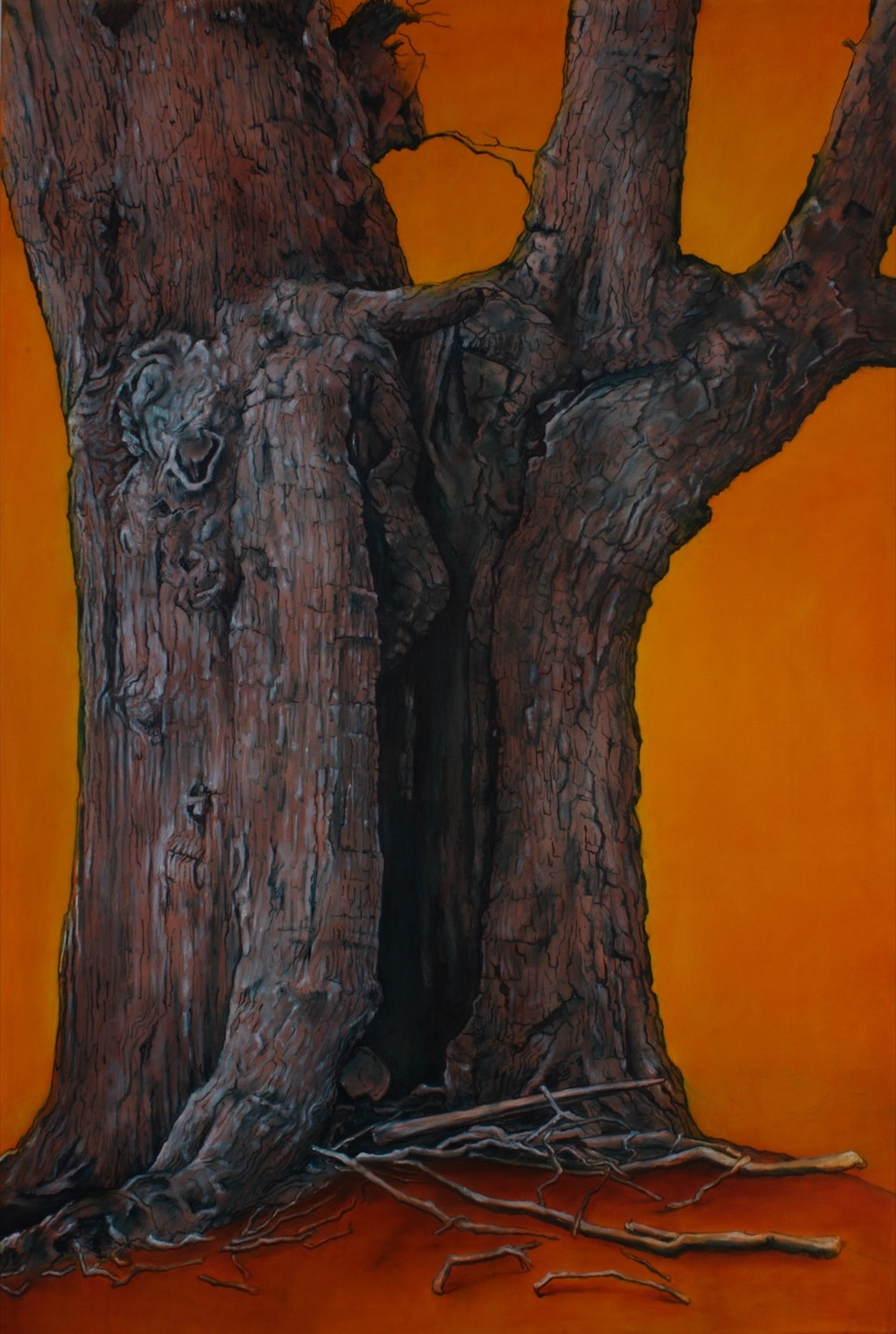 Old Trees - Hatfield