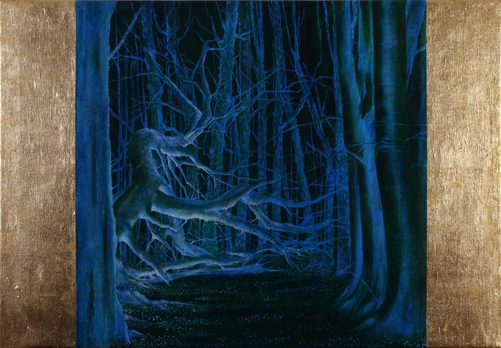 Ashridge Forest - Night