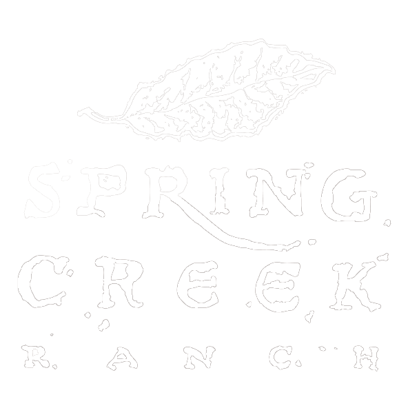 Spring Creek Ranch Weddings