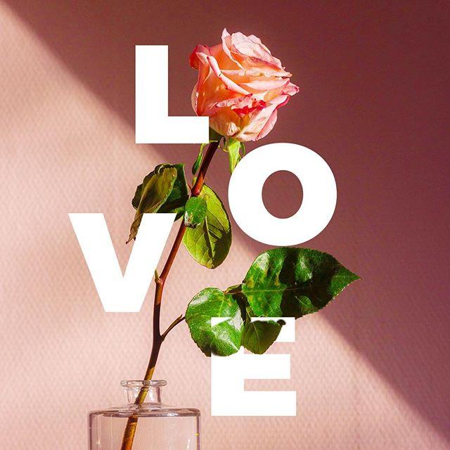 Happy Valentines Day friends!!!