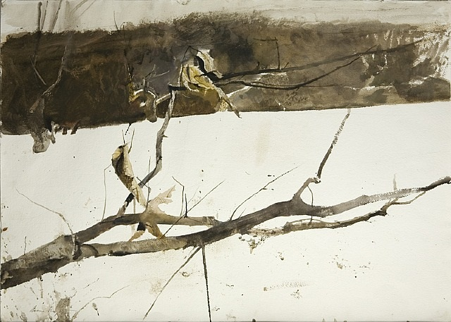Branch in the Snow  , 1980