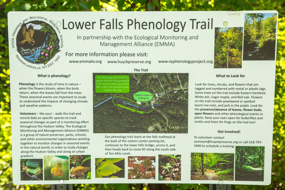 lower falls phenology trail hike.jpg