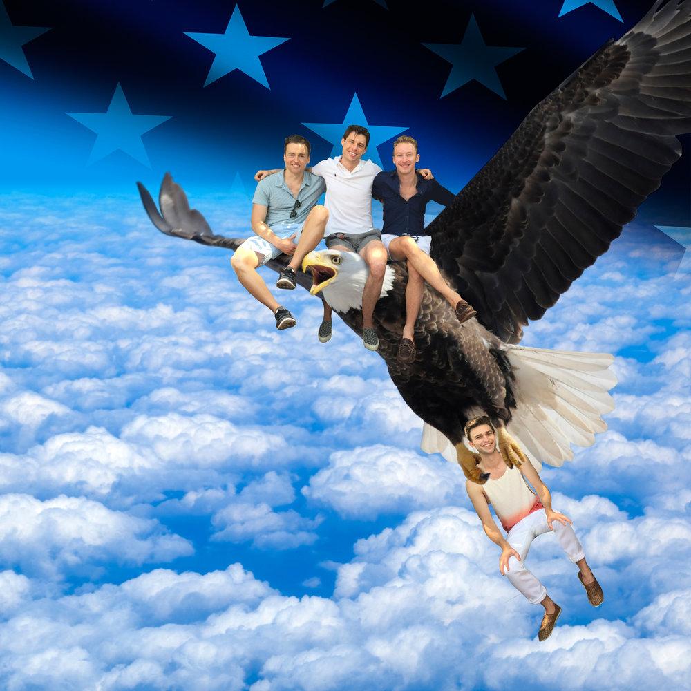 2016: Gays on a Bird