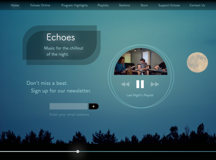 Echoes landing page // Graphic design