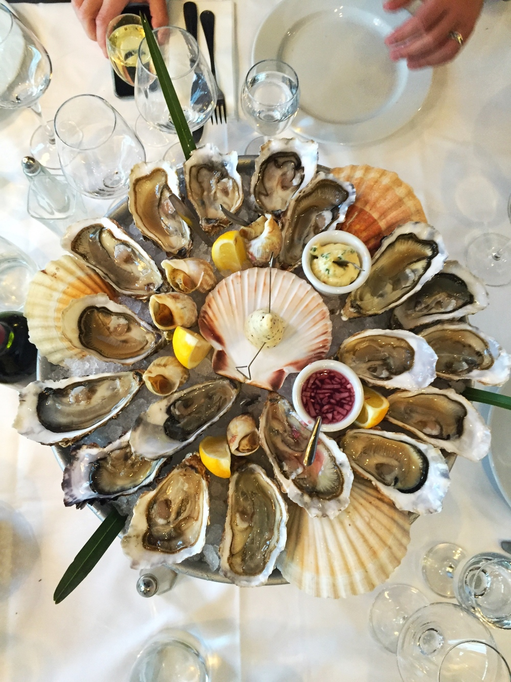 Oyster vibes at restaurant Fernand by the river