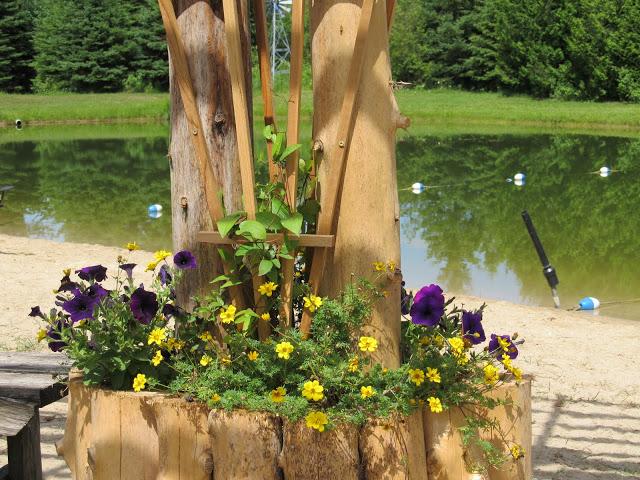 pondflowers.jpg