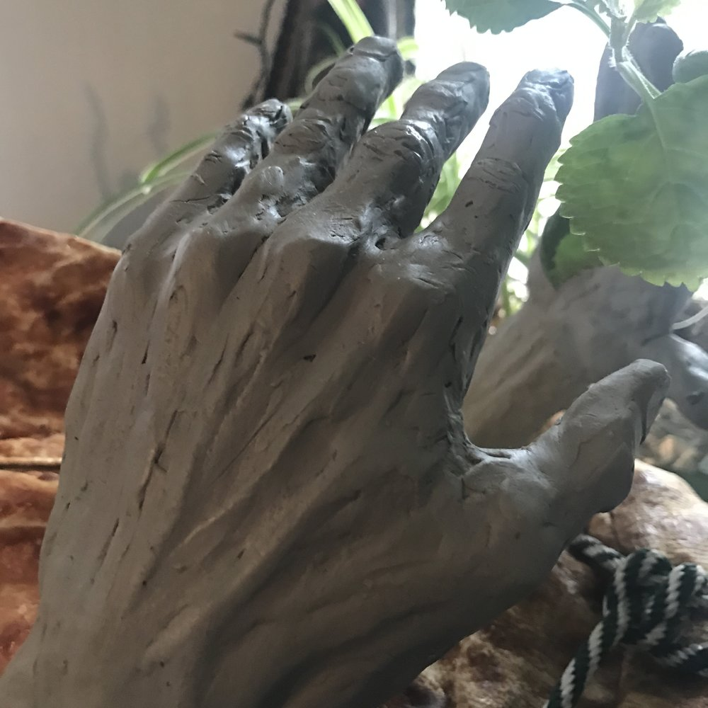 Detail of Hand