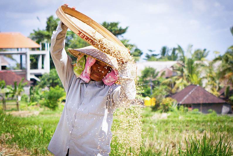 Bali_33.jpg